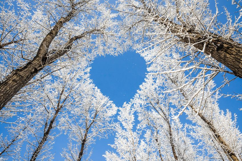 February Inspiration - Getting Through Winter - Reiki newmarket, energy Healing with Karen Armstrong